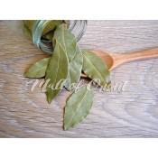 Листни (Зелени) (15)